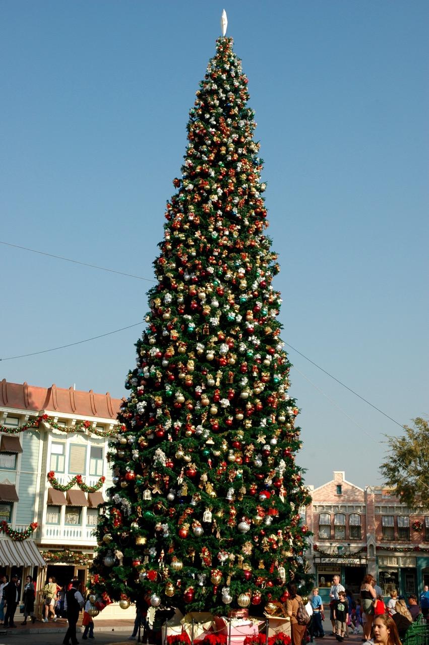 Disneyland Park Town Square Christmas Tree