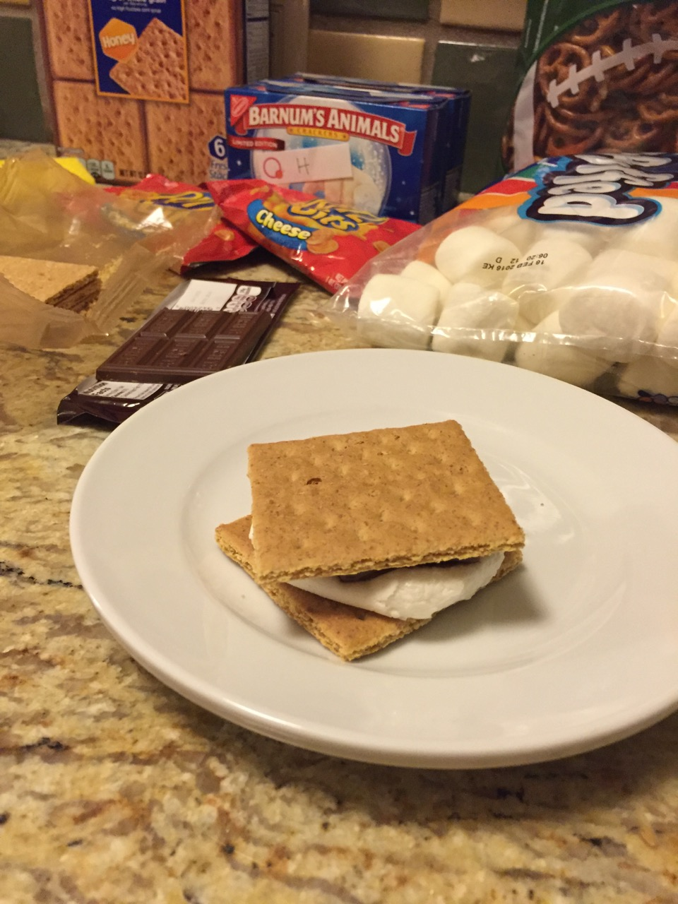 Disney's Wilderness Lodge Oven S'mores