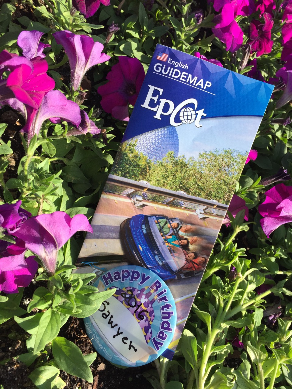 Epcot Birthday Button and Map