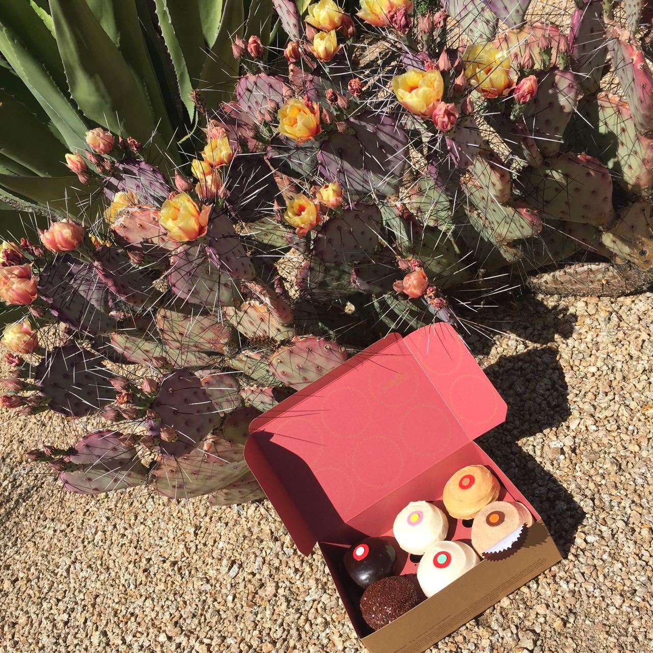 Sprinkles Cupcakes Scottsdale AZ