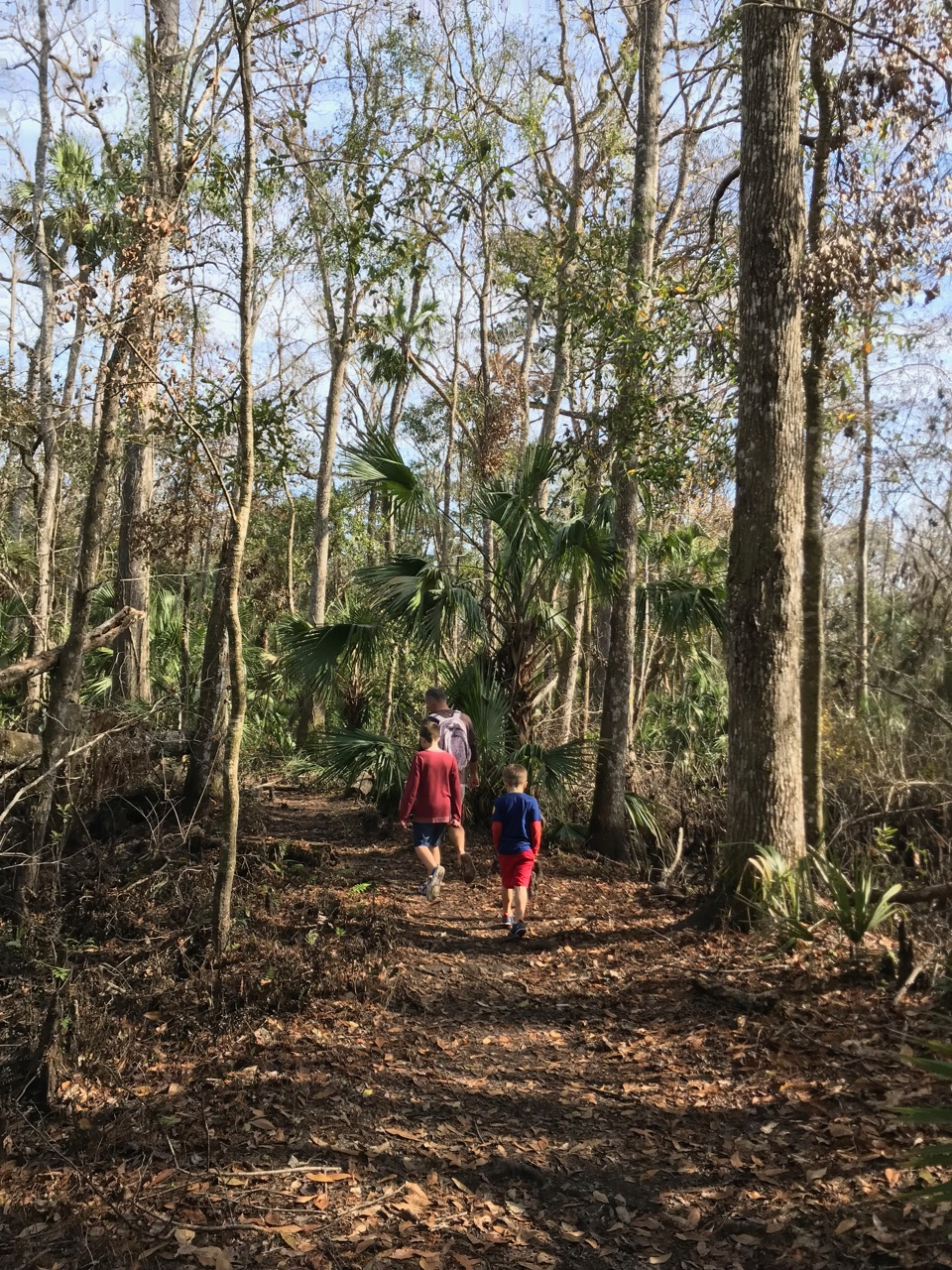 De Leon Springs State Park Walking Trails