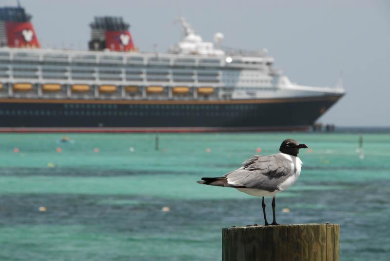 Disney Cruise - Day 03-49