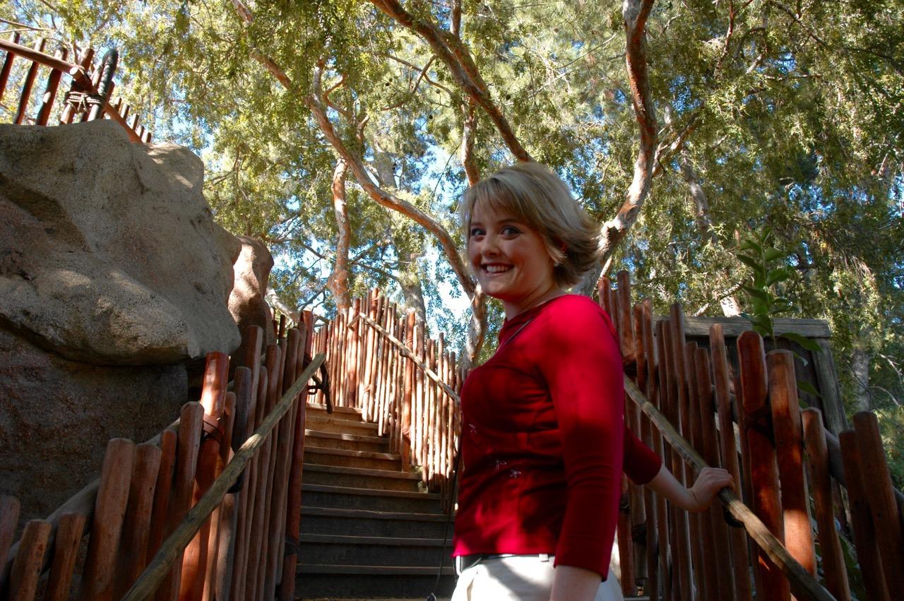 Tarzan's Treehouse Disneyland Park